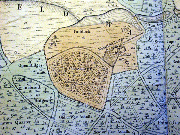 Wakefield in 1848 showing Brown's plans in maturity.